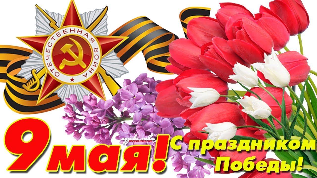 Открытка с праздником великой победы 9 мая,с праздником поздравления Открытка картинка на 9 мая,девятое мая день победы,поздравления с праздником победы 9 мая,открытка картинка с 9 мая,на 9 мая день великой победы скачать бесплатно