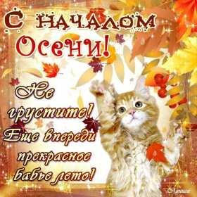Открытка с первым днём осени,с началом осени,с наступлением осени,котёнок Открытка открытки с началом осени,1 сентября осень,картинка картинки с наступлением осени,первый день осени поздравления,открытка начало осени скачать бесплатно