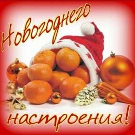 Открытка с пожеланиями новогоднего настроения,мандарины в новогодней шапке Открытка картинка открытки картинки новогоднее настроение,пожелания новогоднего настроения,праздничного настроения,открытка картинка новогоднего настроения скачать