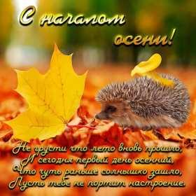 Открытка с первым днём осени,с началом осени,с наступлением осени,ёжик Открытка открытки с началом осени,1 сентября осень,картинка картинки с наступлением осени,первый день осени поздравления,открытка начало осени скачать бесплатно