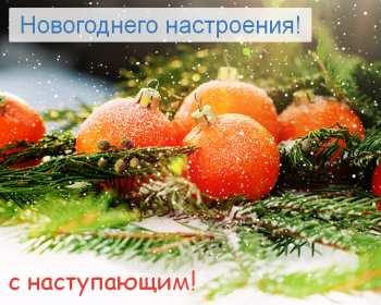 Открытка с пожеланиями новогоднего настроения,ель,игрушка мандарин. Открытка картинка открытки картинки новогоднее настроение,пожелания новогоднего настроения,праздничного настроения,открытка картинка новогоднего настроения скачать